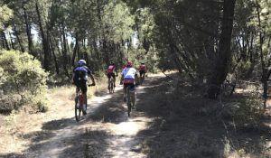 Ruta Entre Pinares
